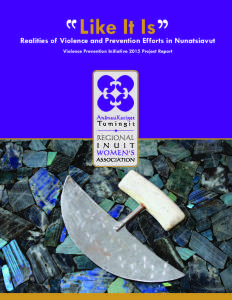 LIKE IT IS: VIOLENCE PREVENTION INITIATIVE 2015 PROJECT REPORT